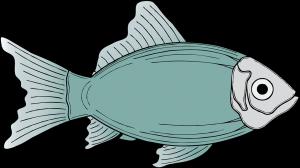 viswinkel Vlaardingen